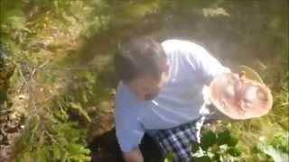 Фильм про грибы Финляндия-август 2011
