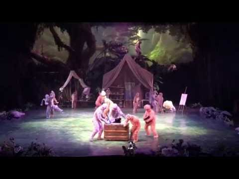 Shanghai Disneyland - Tarzan: Call of the Jungle
