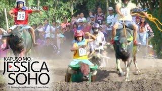 Kapuso Mo, Jessica Soho: Kakaibang karera ng kalabaw sa South Cotabato, kinaaaliwan!