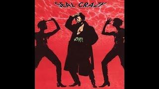 Seal - Crazy (Single Version)