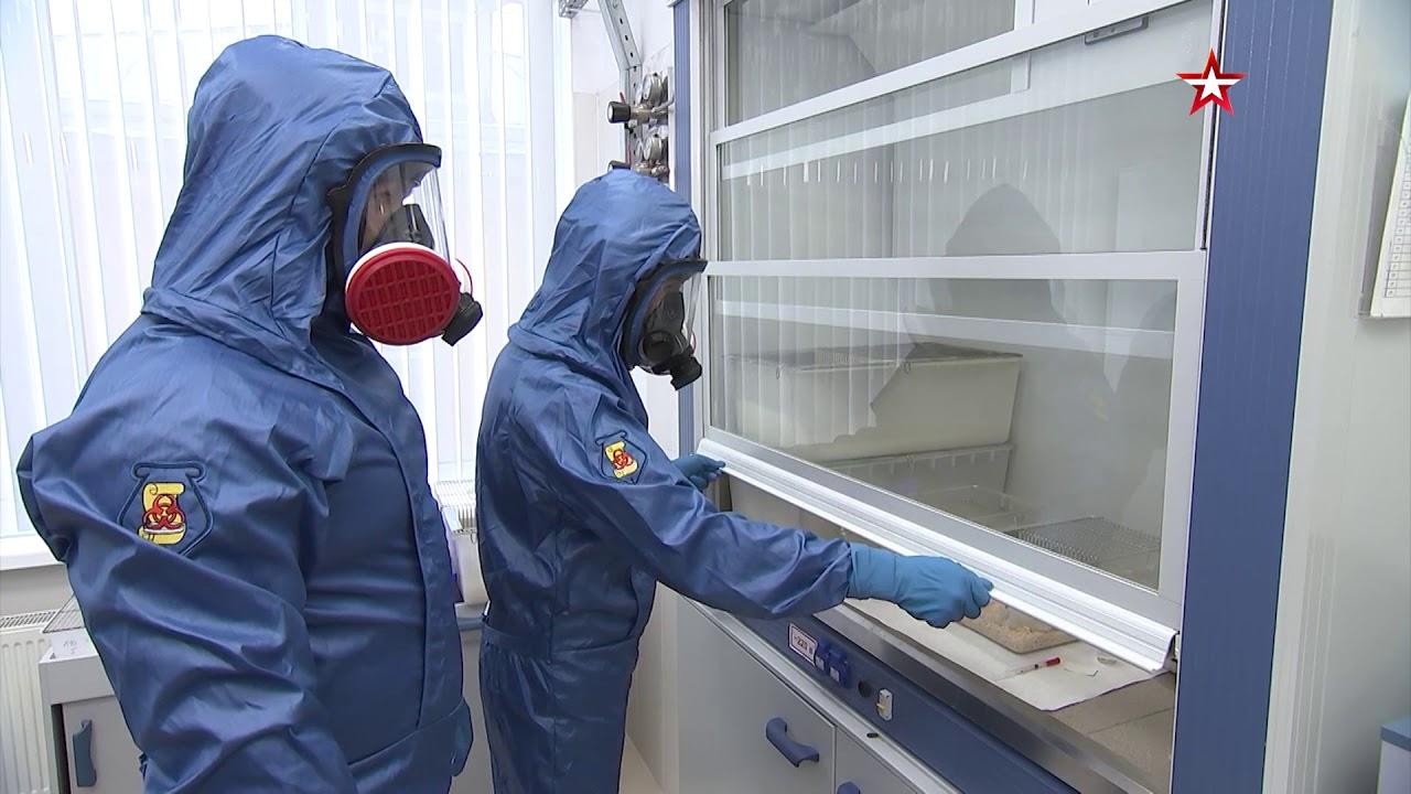Первая группа добровольцев прибыла для эксперимента по испытанию вакцины от COVID-19