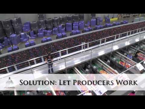 Agriculture: A cornerstone of Washington's economy