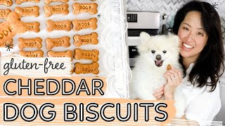 EASY Cheddar Cheese Dog Biscuits  DIY dog treats recipe
