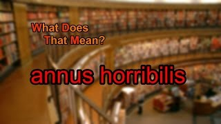 What does annus horribilis mean?