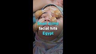 Snail slime facial hits Egypt