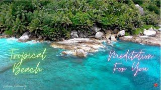 Tropical Beach, Palm Trees, Ocean Sounds, Bird Chirp, Meditation For You / Tropik Sahil, Palmiyeler