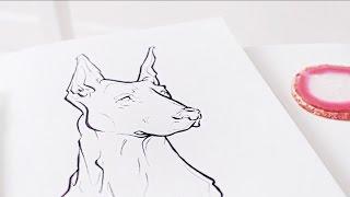 Doberman · Illustration Speed-Sketch · SemiSkimmedMin