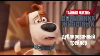 Тайная жизнь домашних животных (2016) - Русский трейлер мультфильма