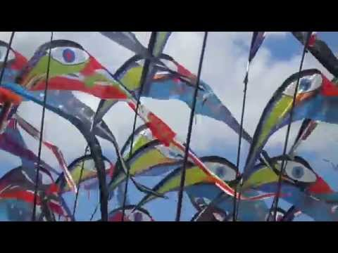 Kites Festival in Hampshire, UK
