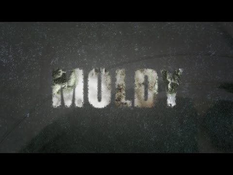 Moldy The Movie – The New Bulletproof Documentary