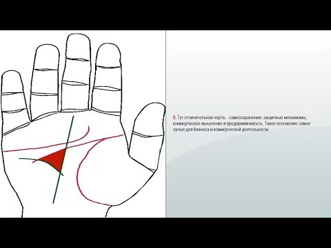 Денежный треугольник и линия меркурия   Ментальный треугольник и борозда предприимчивости  