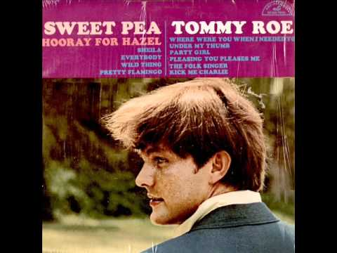 Pretty Flamingo by Tommy Roe on Mono 1966 ABC-Paramount LP.