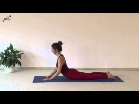 yoga practice videos  yoga vidya  youtube