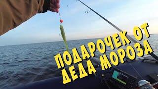 Что клюёт после новогоднего стола... Рыбалка 02.01.20