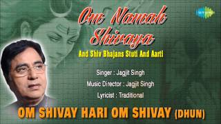 Om Shivay Hari Om Shivay (Dhun) | Hindi Devotional Song | Jagjit Singh