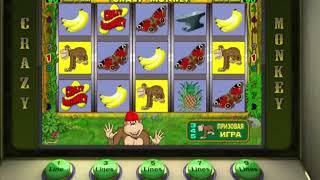 Крупный выигрыш в игровые автоматы Crazy monkey ! Выигрыш в казино онлайн Вулкан.
