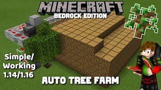 SIMPLE/WORKING Auto Tree Farm for MCPE Minecraft Bedrock  1.14/1.16 (2020)