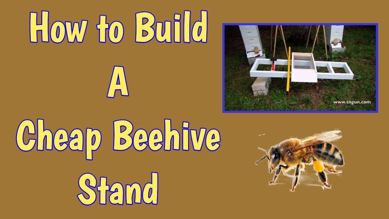 Hive Stand Designs : How to build a cheap beehive stand youtube