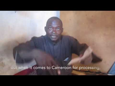 Cameroon diamonds1