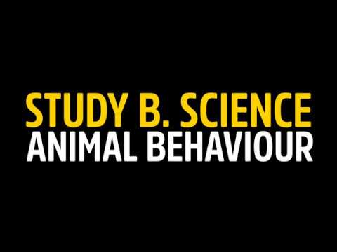Answer the call of the wild, study Animal Behaviour at Flinders University