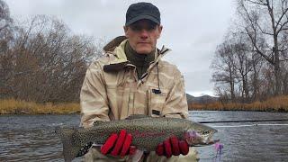 Рыбалка на Камчатке. В поисках радуги Севера. Ловля микижи.