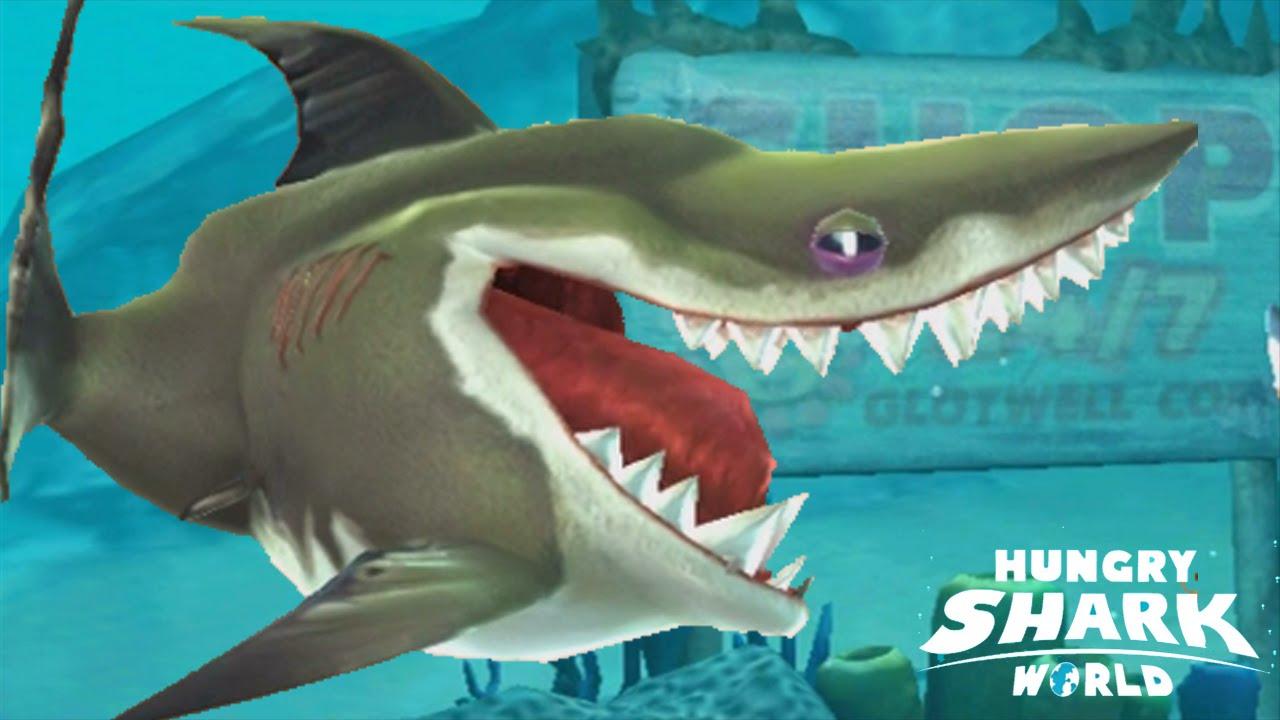 Hungry Shark World - Baby Megalodon Pet Shark Max & Kraken - YouTube