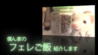 It is an introduction of the food that our ferret is giving at home...