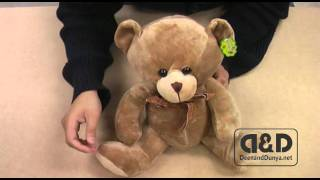 Umair the Talking Teddy Bear by DeenandDunya.net