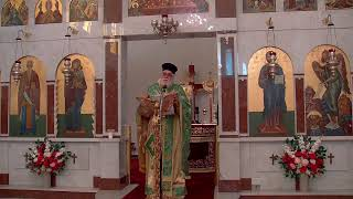 MATINS AND DIVINE LITURGY OF THE FALLING ASLEEP OF THE THEOTOKOS