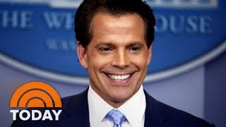 Anthony Scaramucci Is 'A Street Fighter' Like Donald Trump, Analyst Says | TODAY