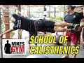 School of Calisthenics Workshop at Mike's Gym (Marbella) #VLOG #TRAVEL #SPAIN