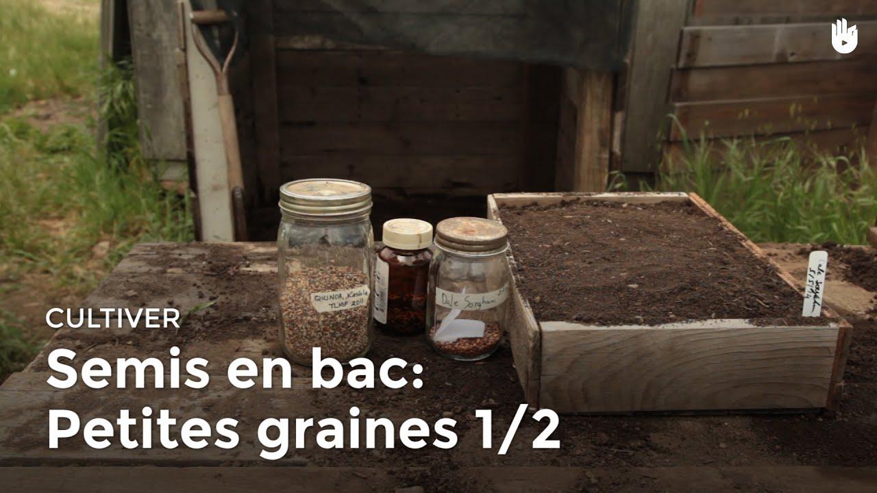 Semis en bac petites graines 1 2 youtube - Bac a semis ...