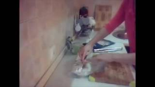 Филе трески в фольге