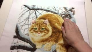 Вышивка крестиком. Рыжий кот. Золотое руно. Готовая работа