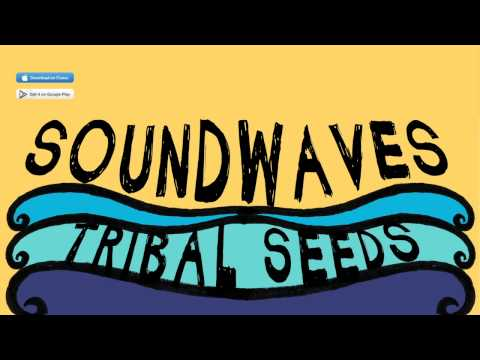 Tribal Seeds - In Your Eyes (OFFICIAL)