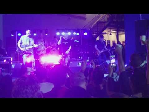 The Connells  - 74/75 - Live at Tradition Brewing Company