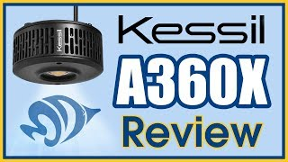 The A360X Is The Best Aquarium Light Kessil Has Ever Made. PERIOD.