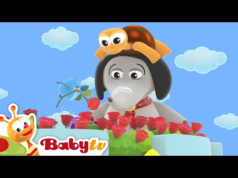 Ring a Ring O' Roses 🌹🌹 (Remastered with Lyrics) | Nursery Rhymes & Songs for Kids | BabyTV