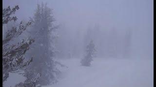 SIERRA BLIZZARD:  Raw video of blizzard hitting the Sierra this morning