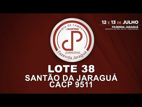 LOTE 38 (CACP 9511)
