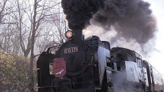 冬の釧路湿原を走る蒸気機関車C11171号機「冬の湿原号」。力強い汽笛とブラスト音を響かせ北の大地を驀進するSLの雄姿