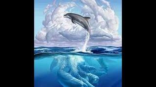 Новая игра?|Синий Дельфин|Что это?