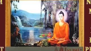Nam Mô Bổn Sư Thích Ca 2017   Nhạc Niệm Phật Mới Nhất