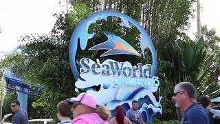 SEAWORLD Getting Wet v2
