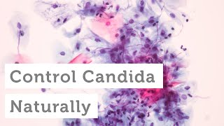 What to Do About a Candida or Yeast Overgrowth