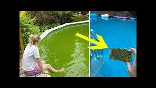 Clever Grandma Goes Viral On The Internet After Throwing Magic Eraser Into Dirty Green Pool
