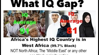 An Inconvenient Truth about IQ's and Race