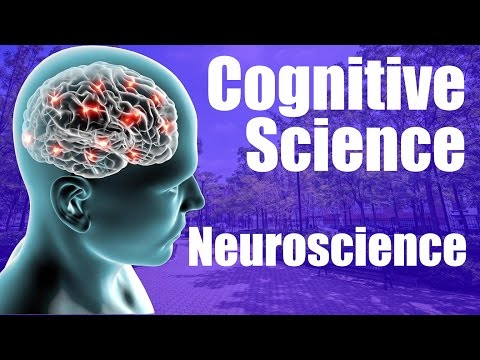 Cognitive Science Major - Neuroscience Emphasis