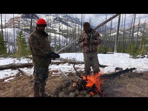 elk hunt yellowstone 2016