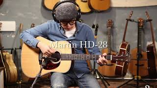 Martin HD-28 Resimi